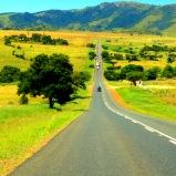 From Nelshoogte to Northern Drakensberg