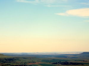 Looking out at Limpopo