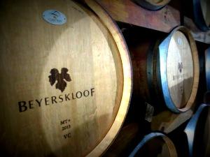 Wine Making at Beyerskloof - Stellenbosch